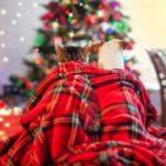 Ёлка-пристройство собак и кошек из приютов «ДОМОЙ!»